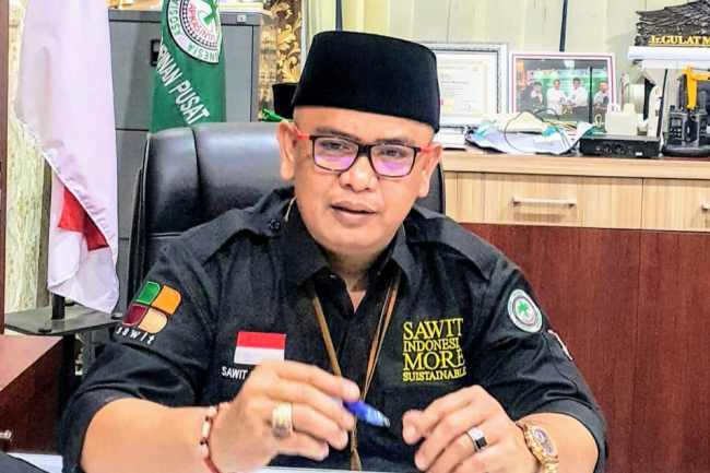 Asosiasi: Sawit Indonesia Seksi, Banyak Yang Iri